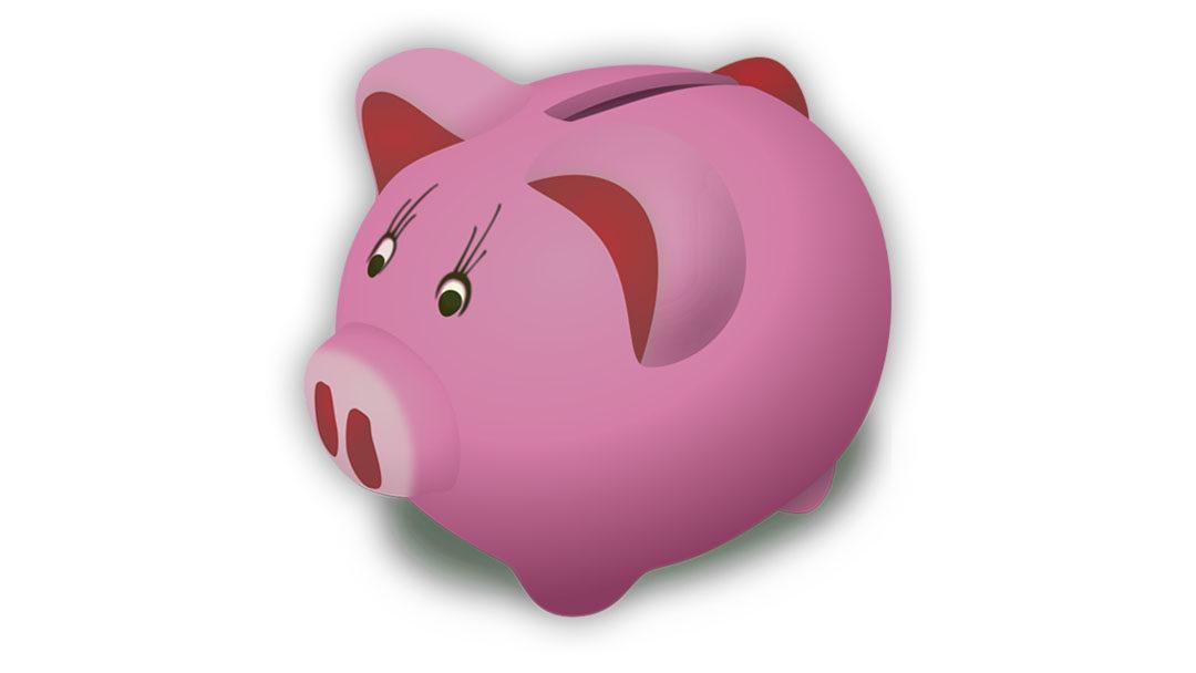 """Projekt edukacyjny dotyczący prowadzenia  szkolnej kasy oszczędności """"SKO"""""""