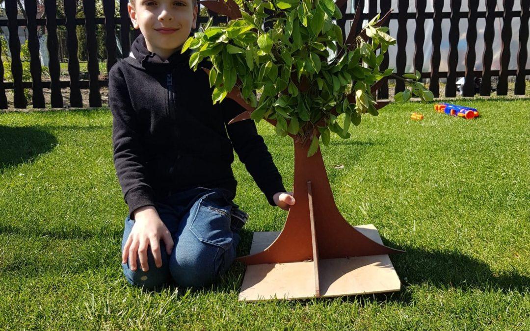 Drzewa dla Ziemi
